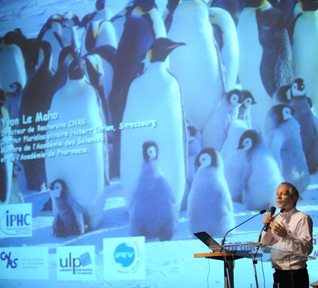 Association protection environnement – Evènement autour du développement durable 77